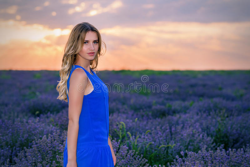 Belle fille dans le domaine de lavande au coucher du soleil images libres de droits