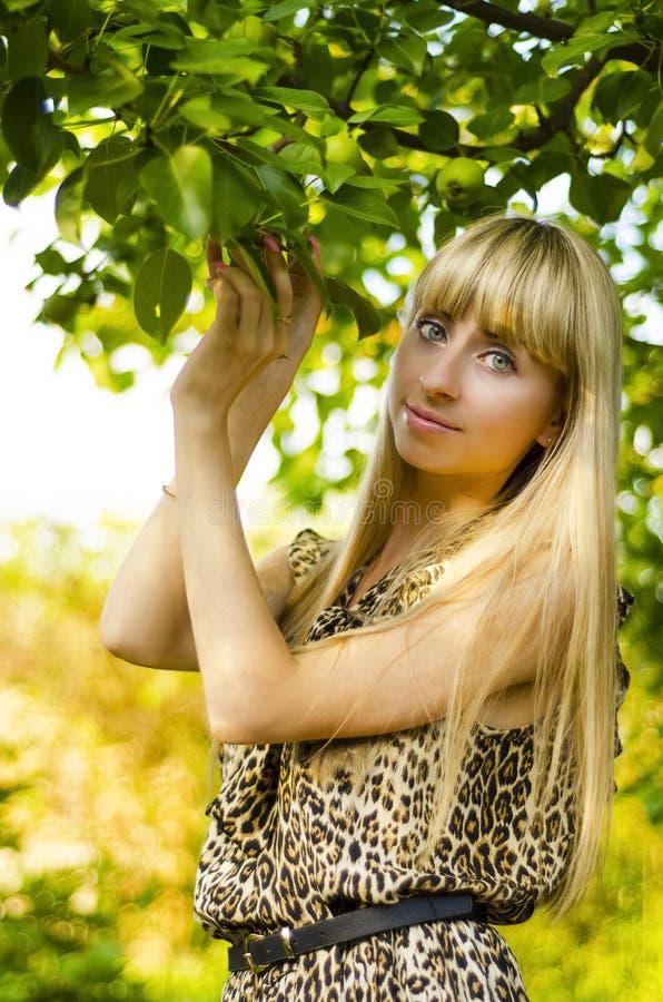Belle fille, dans le jardin d'été image libre de droits