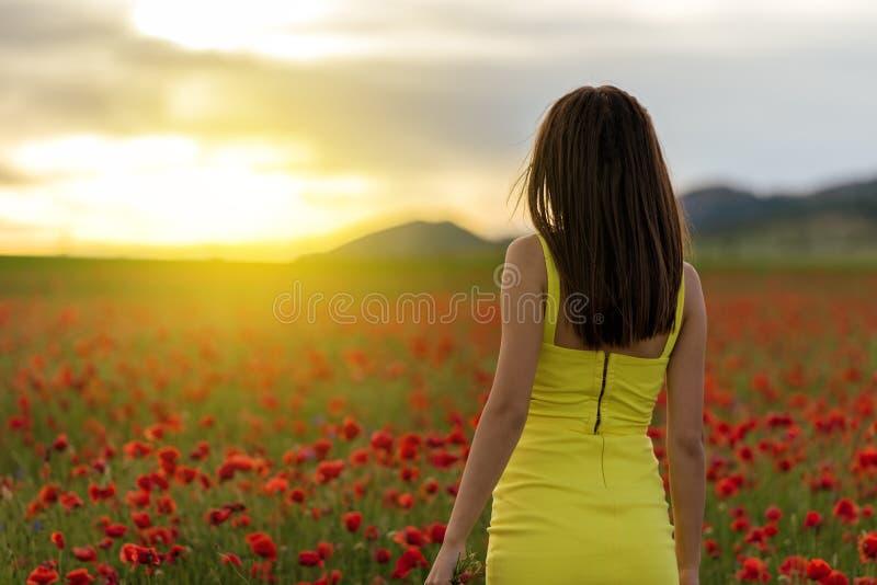 Belle fille dans un domaine de pavot au coucher du soleil photo stock