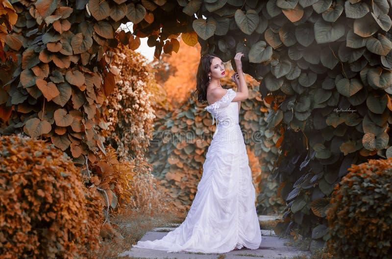 Belle fille dans une robe blanche dans le jardin d'automne, la jeune mariée sur la promenade photos libres de droits