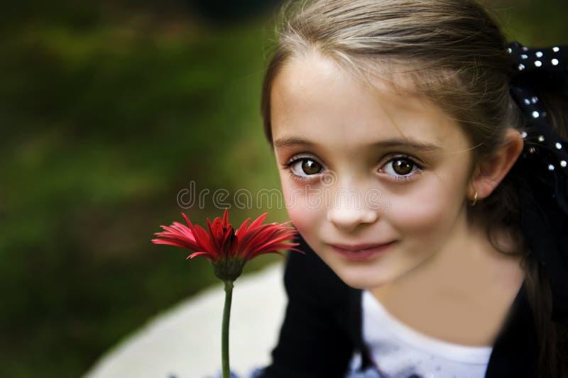 Belle fille de Brunette image stock