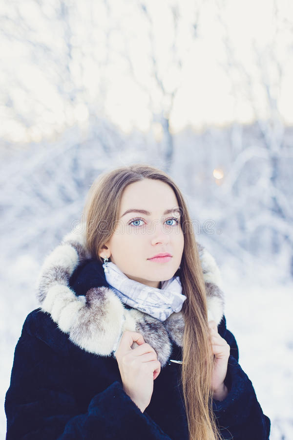 Belle fille en hiver photo stock