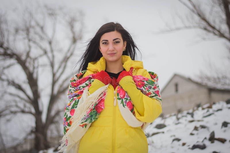 Belle fille en hiver photographie stock