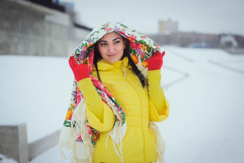 Belle fille en hiver photo libre de droits