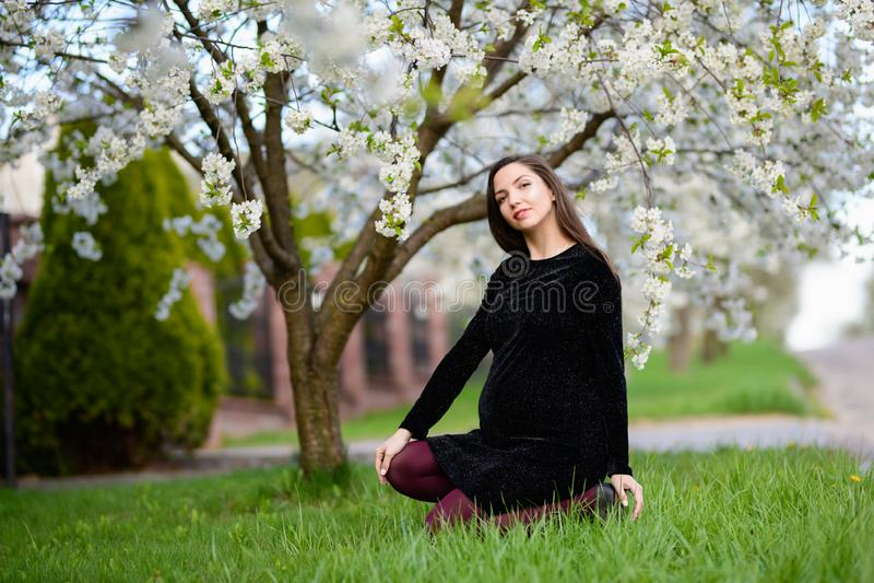 Belle fille enceinte s'asseyant sur l'herbe verte Portrait d'un jeune modèle enceinte heureux avec un sourire doux Femme enceinte photographie stock