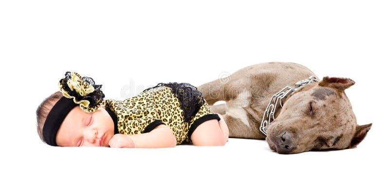 Belle fille nouveau-née dormant ainsi que son chien un pitbull photos stock