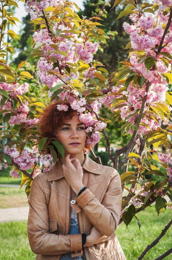 Belle fille posant dans la perspective des arbres roses de floraison Ressort Sakura photos libres de droits