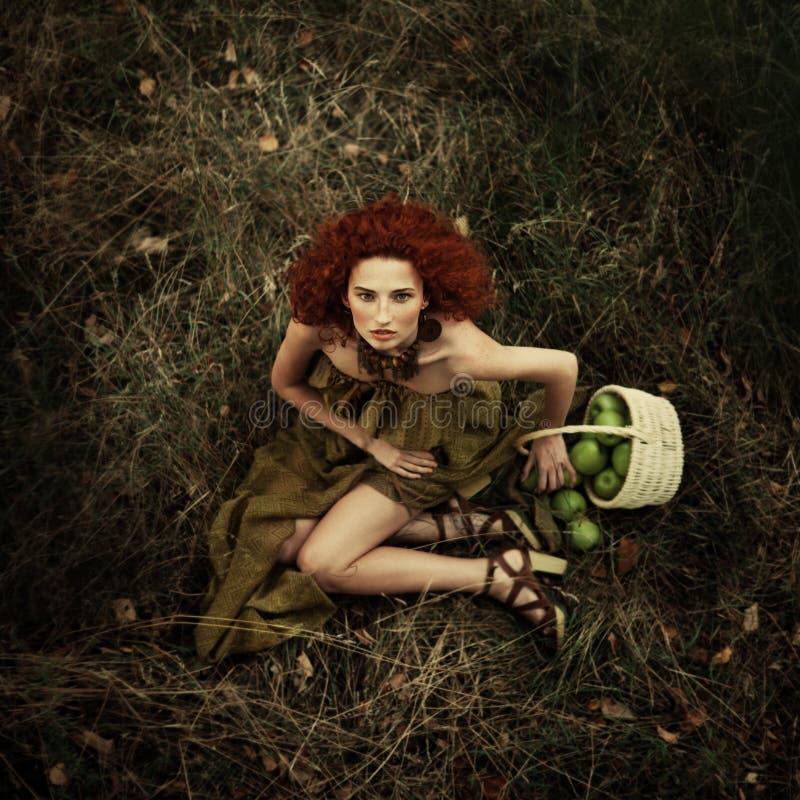 Belle fille rousse dans le champ de pommiers images stock