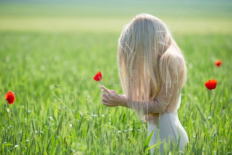 Belle fille sur le champ vert avec des pavots au printemps images libres de droits