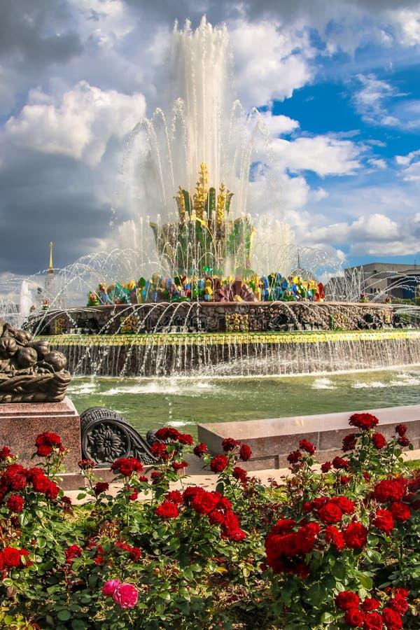Belle fleur de pierre de fontaine après restauration en 2019 images libres de droits