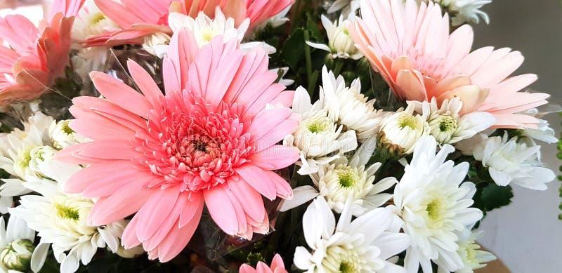 Belle fleur de rose et blanche de bouquet pour le fond images stock