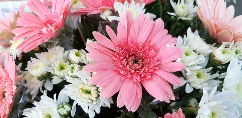 belle fleur de rose et blanche de bouquet pour le fond photo stock