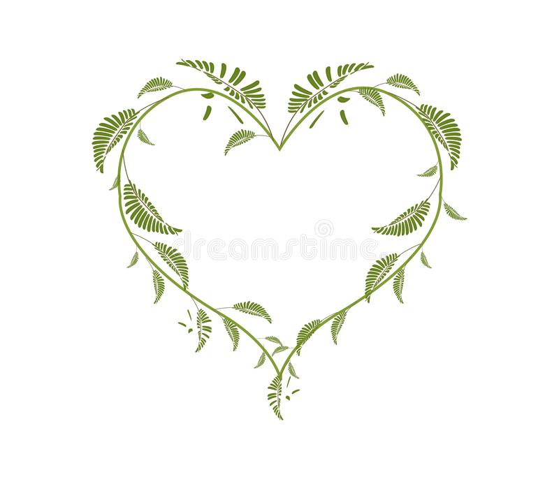 Belle foglie di vite verdi in una forma del cuore illustrazione di stock