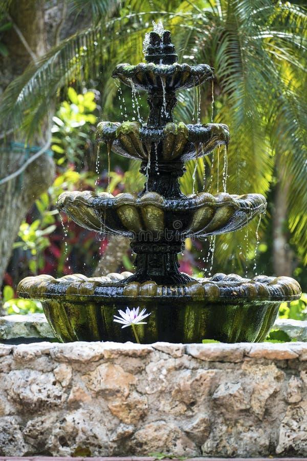 Belle fontaine d'eau en île de Grand Cayman images libres de droits