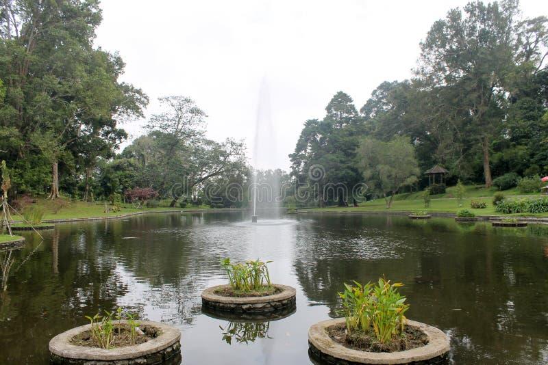 Belle fontaine dans le lac : Jardin botanique de Cibodas dans Puncak photo libre de droits