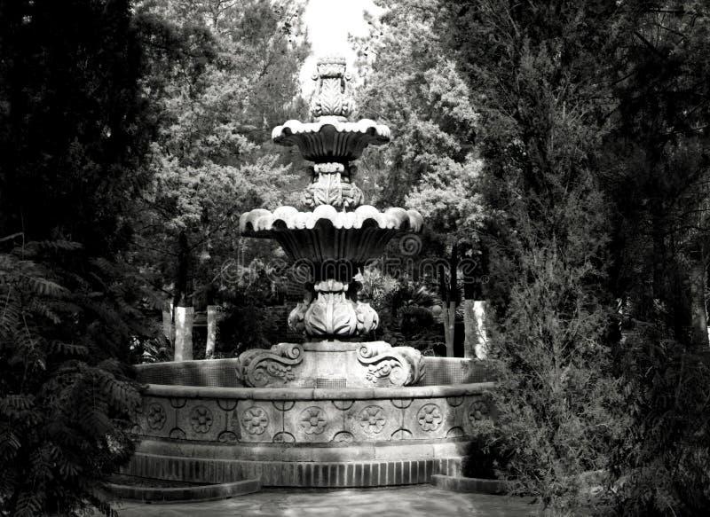 Belle fontaine en noir et blanc images stock
