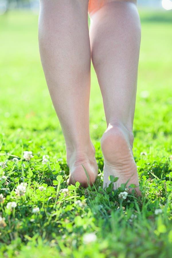 Belle gambe che fanno un passo sull'erba verde fotografia stock libera da diritti