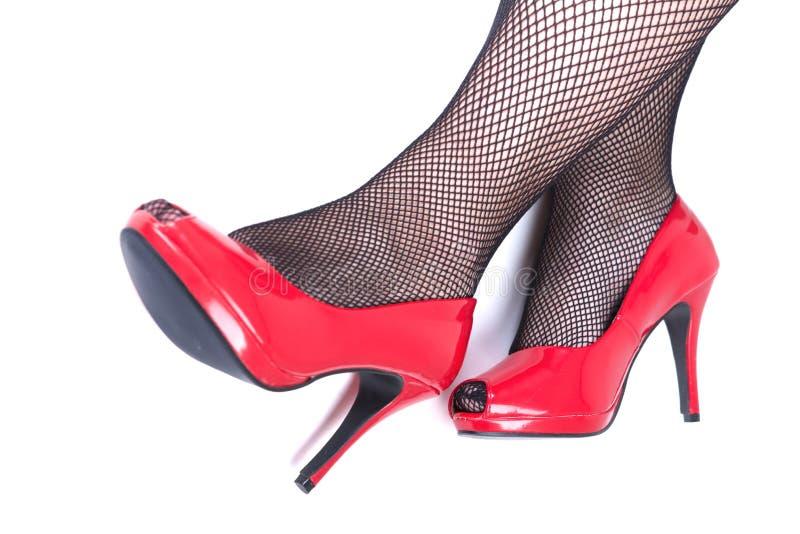 Belle gambe femminili con i talloni rossi su fondo bianco fotografia stock libera da diritti