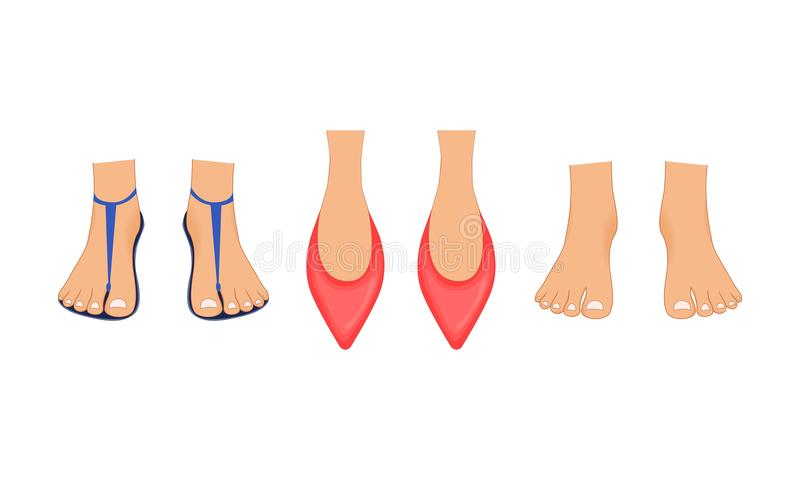 Belle gambe femminili in pantofole rosse, nei sandali della spiaggia di estate e nei piedi nudi con un pedicure Illustrazione fat royalty illustrazione gratis