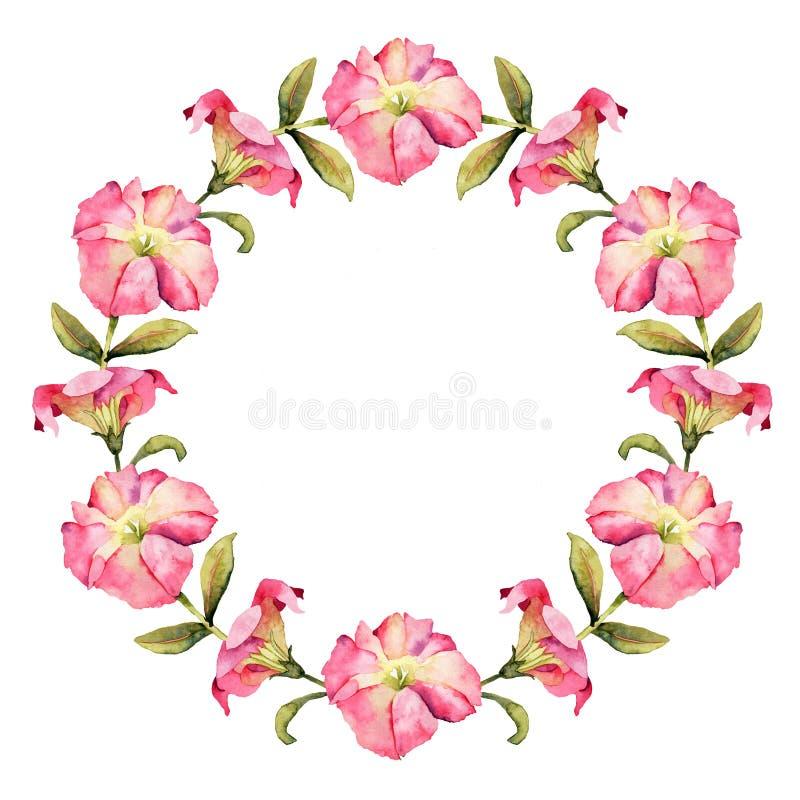 Belle guirlande d'aquarelle de fleur de pétunia illustration stock