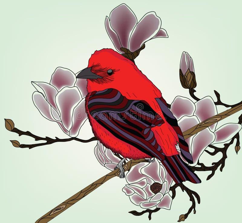 Belle illustration avec le bullfinch illustration stock