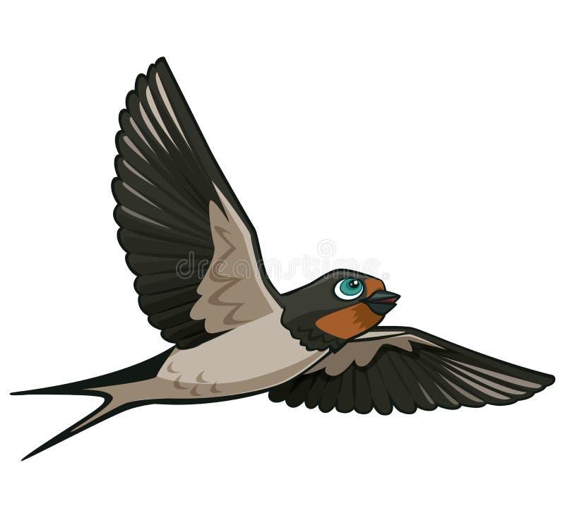 Belle illustration réaliste de vecteur de vol d'hirondelle de bande dessinée d'isolement sur le blanc illustration libre de droits