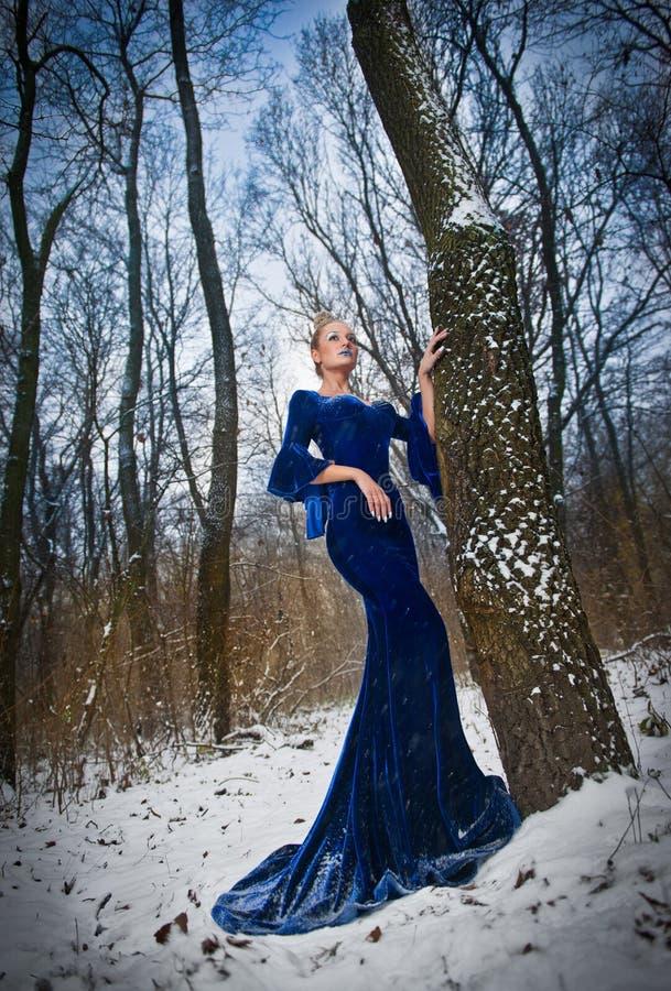 Belle jeune dame dans la robe bleue élégante posant dans le paysage d'hiver, regard royal Femme blonde à la mode avec la forêt à  photographie stock libre de droits