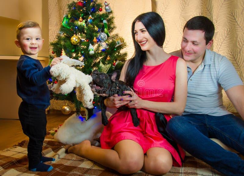 Belle jeune famille appréciant jouer avec le nouveau chiot à Noël photos stock