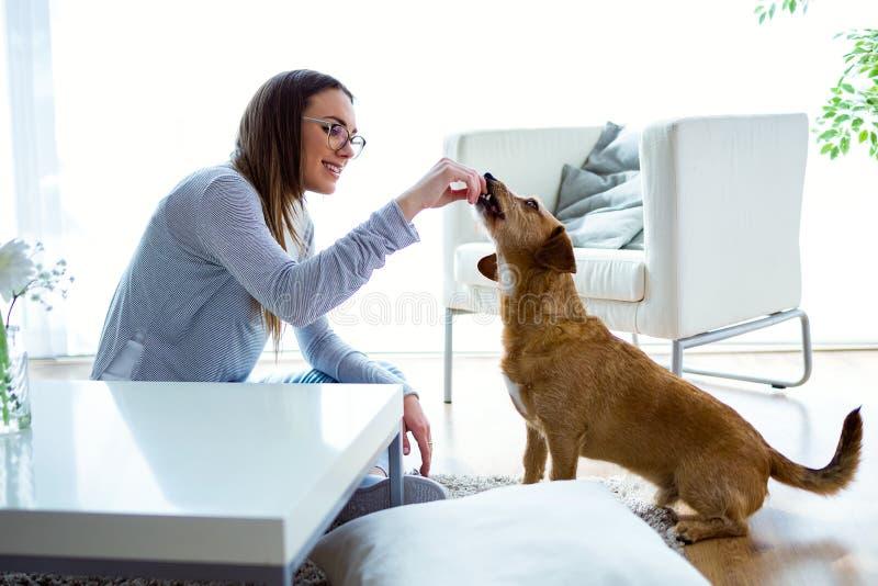Belle jeune femme avec le chien jouant à la maison photo stock