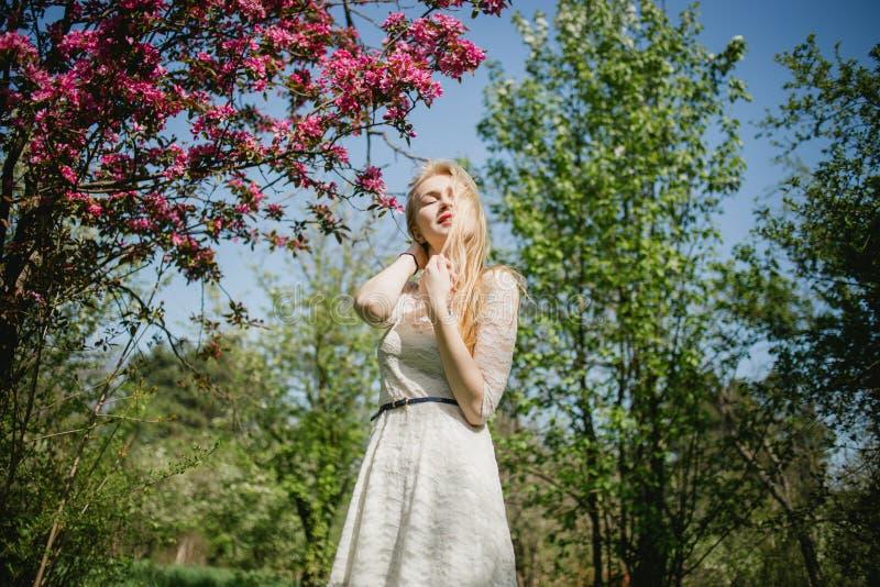 Belle jeune femme blonde dans la robe blanche marchant au parc de ressort près des cerisiers roses Elle apprécie la nature avec f photos libres de droits