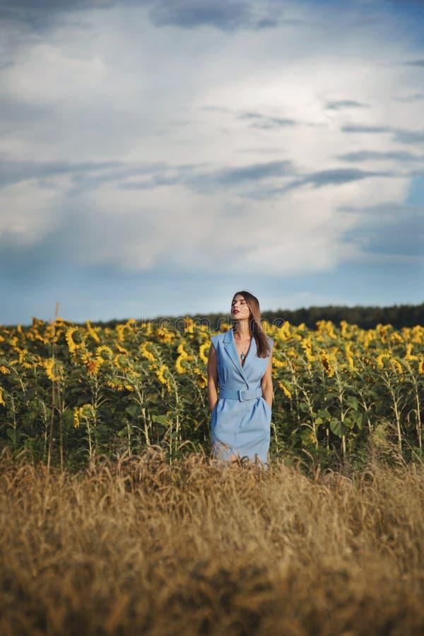 Belle jeune femme dans la position bleue de robe sur le gisement de tournesol photos stock