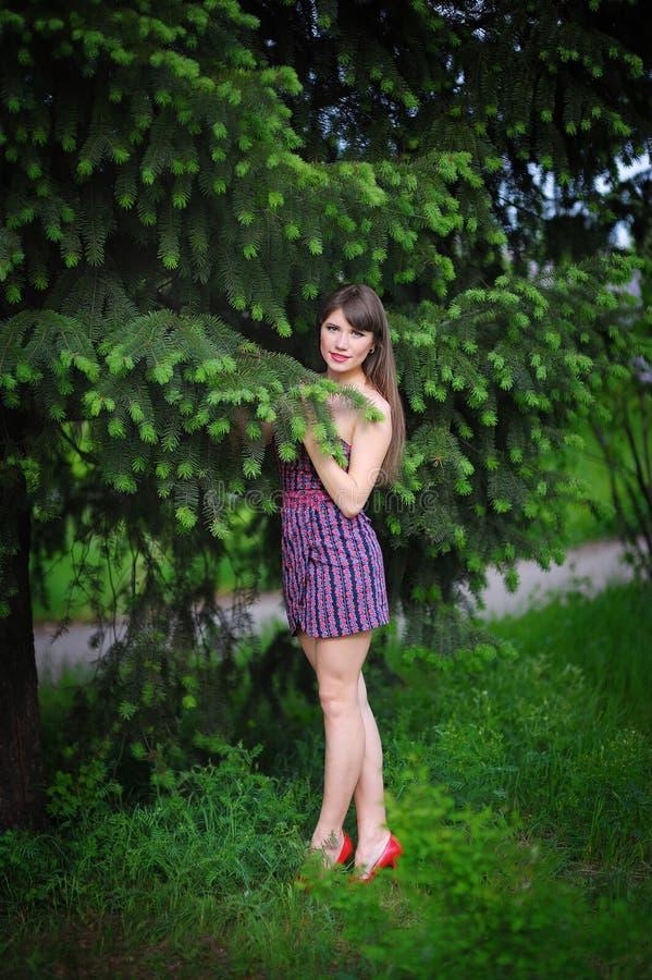 Belle jeune femme dans une fin extérieure de portrait de parc d'été  images stock