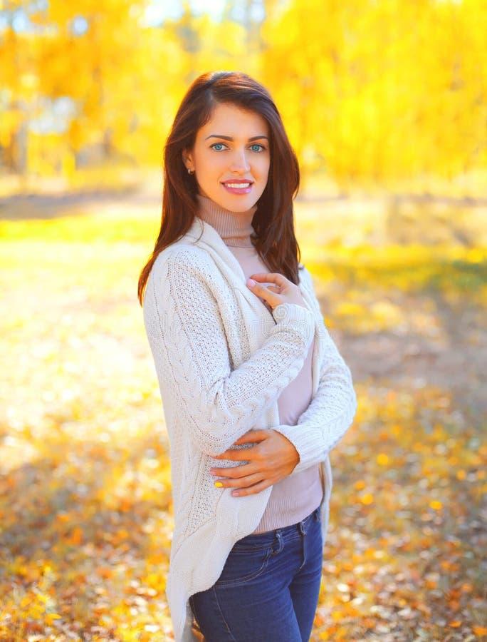 Belle jeune femme de sourire de portrait en automne ensoleillé photographie stock