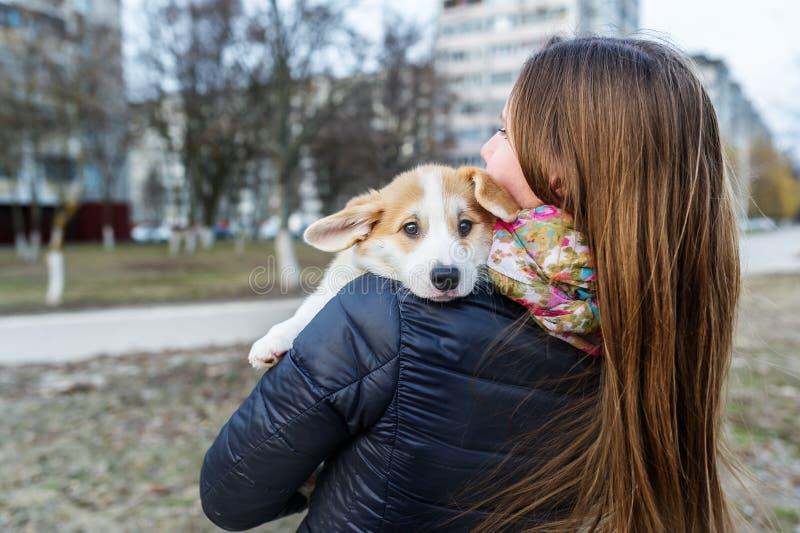 Belle jeune femme tenant le petit chien sur le fond de la rue de ville Vue arri?re photos stock