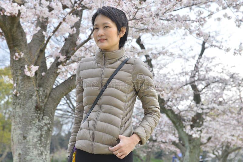 Belle jeune fille asiatique dans le jardin de floraison de Sakura photo libre de droits