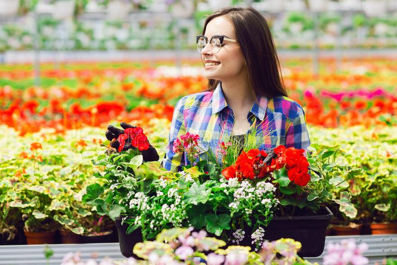 Belle jeune fille de sourire en verres, ouvrière avec des fleurs en serre chaude Travail de concept en serre chaude Copiez l'espa images stock