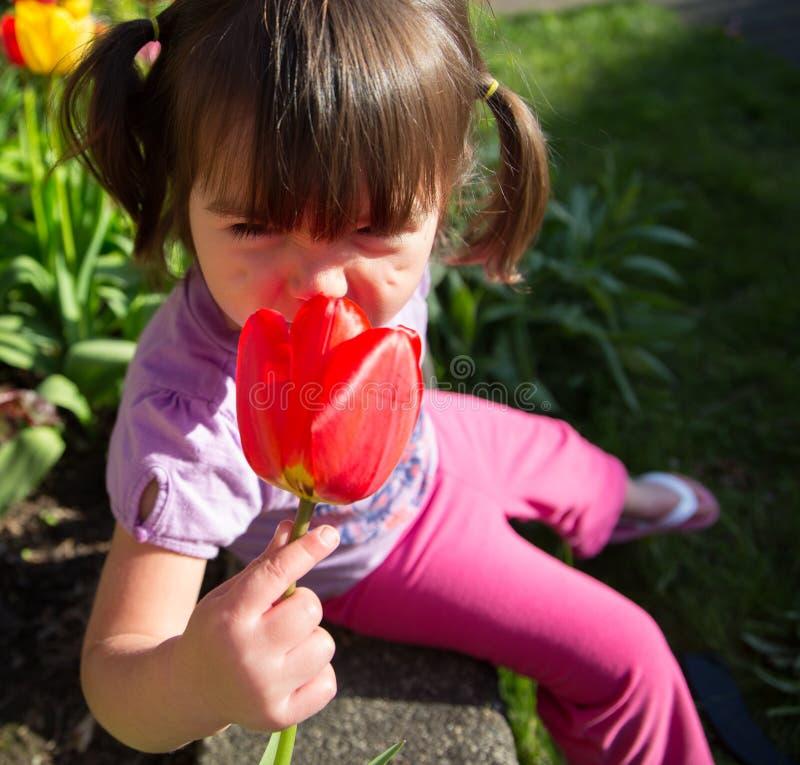 Belle jeune fille sentant Tulip Flower dans le jardin photo stock