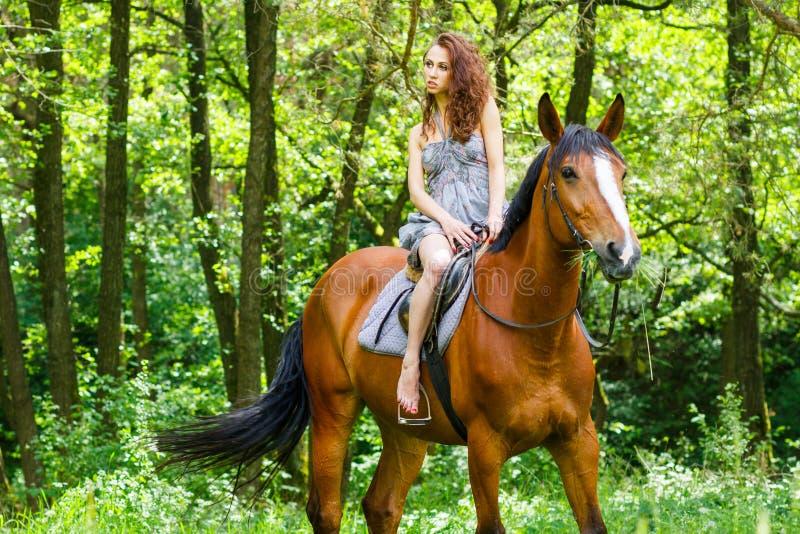 Belle jeune fille sur le cheval photographie stock