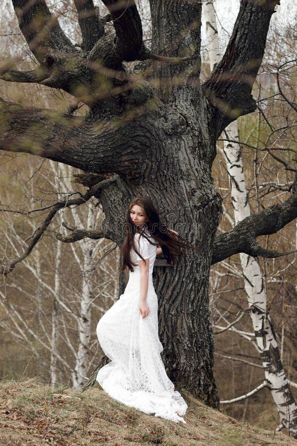 Belle jeune mariée dans la robe blanche se tenant devant l'arbre gris image stock