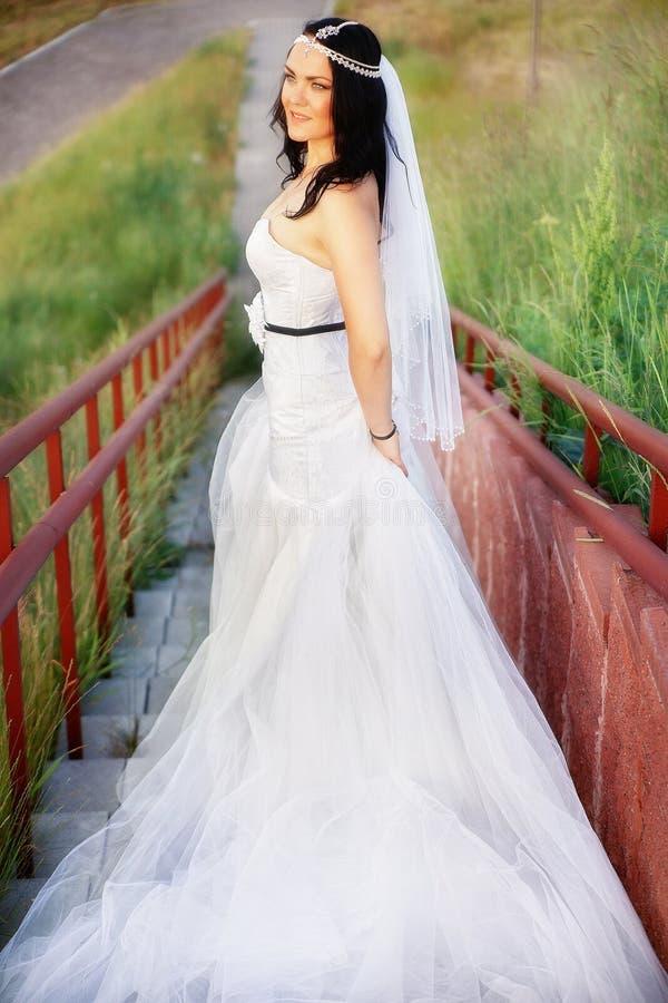 Belle jeune mariée dans un domaine photographie stock libre de droits