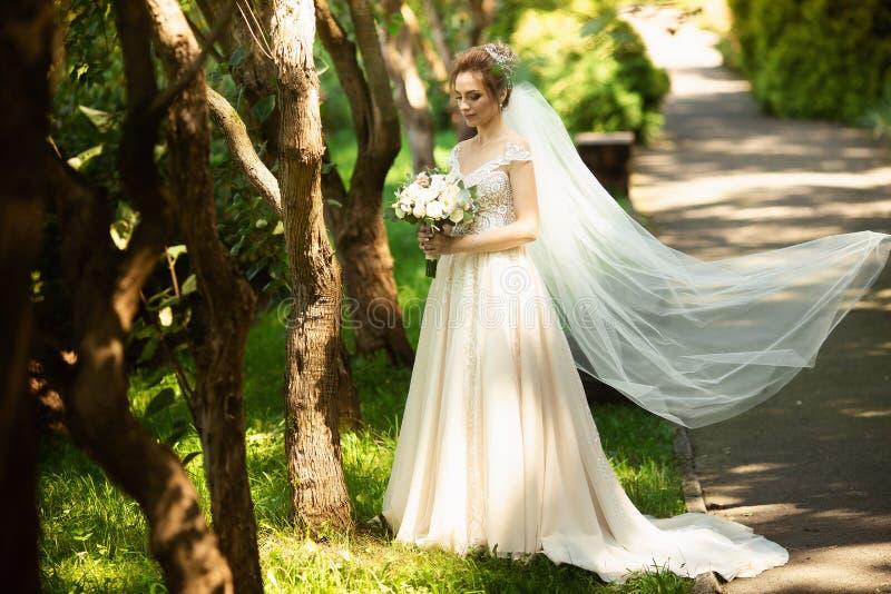 Belle jeune mariée marchant en parc Épouser la dispersion de voile du vent Portrait de beauté d'une jeune mariée autour de nature images libres de droits