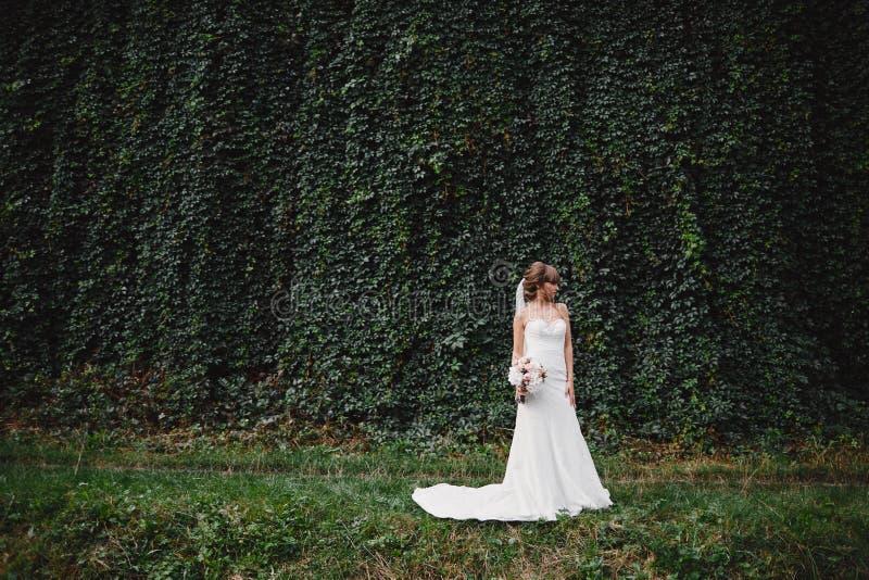 Belle jeune mari?e dans la robe de mariage de mode sur le fond naturel Jour du mariage Un beau portrait de jeune mari?e image libre de droits