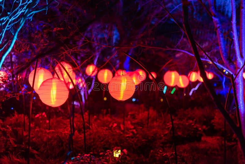 Belle lanterne d'ardore alla notte fotografia stock libera da diritti