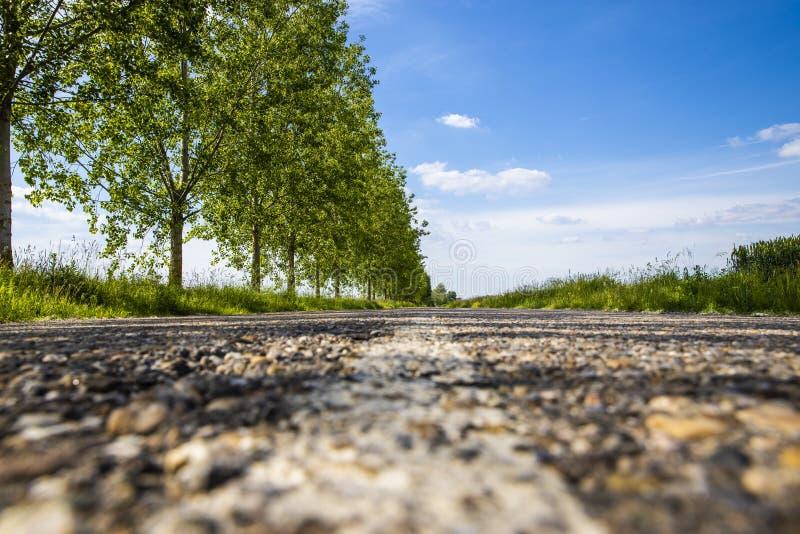 Belle ligne Closup de route dans Palic, Voïvodine, Serbie en été photos libres de droits