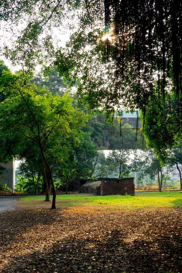 Belle lumière de coucher du soleil en parc public avec la feuille en baisse images stock