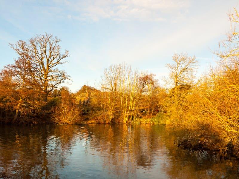 Belle lumière de coucher du soleil de scène de lac d'automne d'or sur la station thermale de ciel d'arbres photos stock