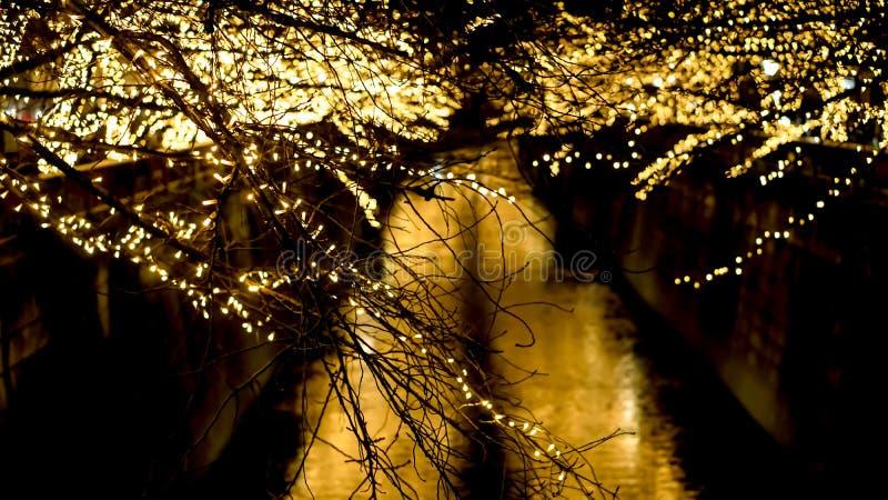 Belle lumière de Noël d'or d'illumination à Tokyo, Japon L image libre de droits