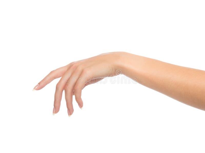 Belle main femelle avec des ongles de manucure française images stock