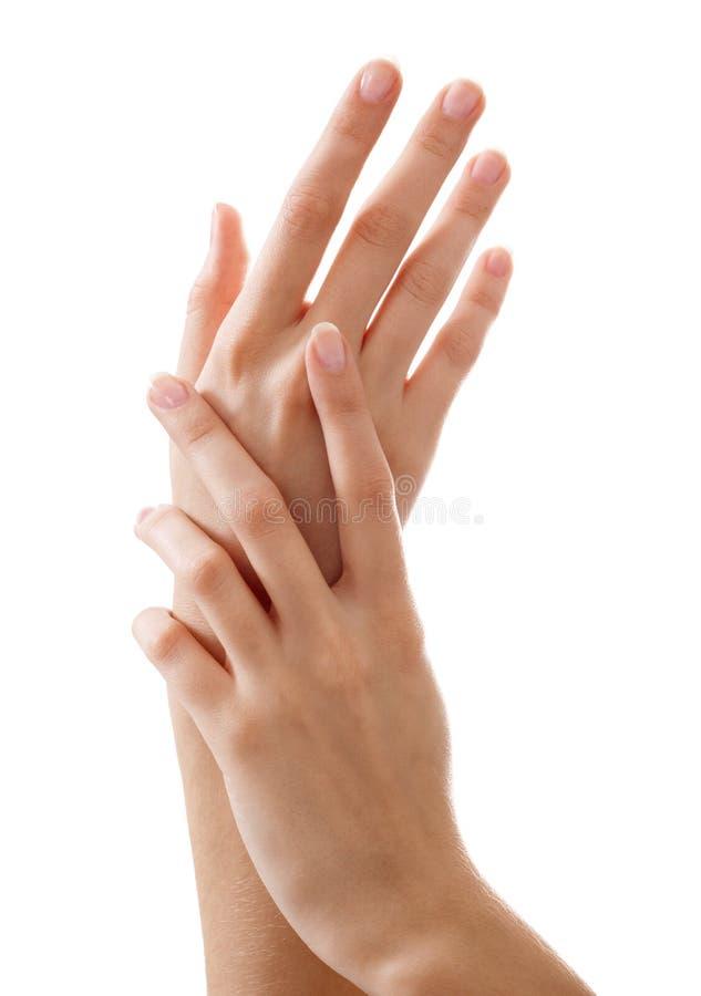 Belle mani della donna con il manicure francese immagine stock libera da diritti