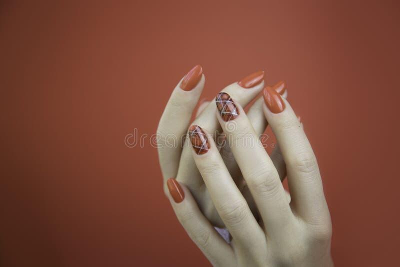 Belle mani manicured del ` s della donna su fondo rosso immagini stock libere da diritti